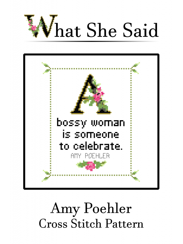Amy Poehler Cross Stitch Chart Cover