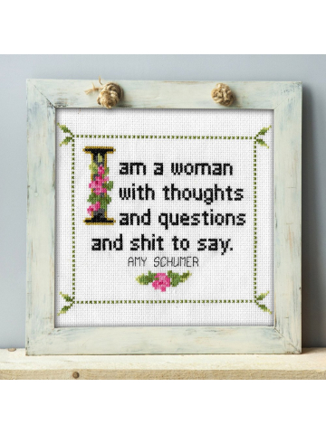 Amy Schumer Quote